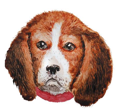 Aquarell künstlerische pelzigen Hund Porträt isoliert auf weißem Hintergrund. Nette Haustier Tier Kopf Hand gezeichnet. Süßer Welpe. Neues Jahr-Symbol, Weihnachtskarte, Weihnachten Emblem. Standard-Bild - 85391764