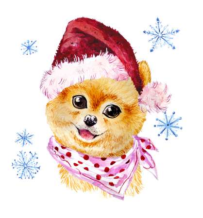Watercolor artistic xmas dog in santa hat portrait isolated on white background. Cute pet animal head hand drawn. Pomeranian puppy. New Year symbol, christmas card, xmas emblem.