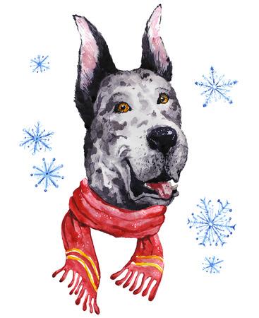 Watercolor artistic mastiff dog in winter scarf portrait isolated on white background. Cute pet animal head hand drawn. Mastiff puppy. New Year symbol, christmas card, xmas emblem.