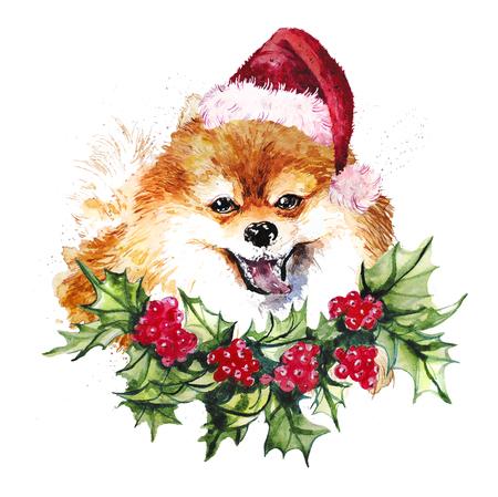 Waterverf artistieke oranje die Pomeranian hond in santahoed en hulstkroonportret op witte achtergrond wordt geïsoleerd. Schattig huisdier hoofd hand getrokken. Pommeren puppy. Nieuwjaarsymbool, Kerstmiskaart, Kerstmisembleem.