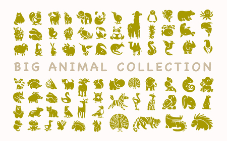 Vector collection of flat cute animal icons isolated on white background. Exotic, rare, tropic, north, african, forest