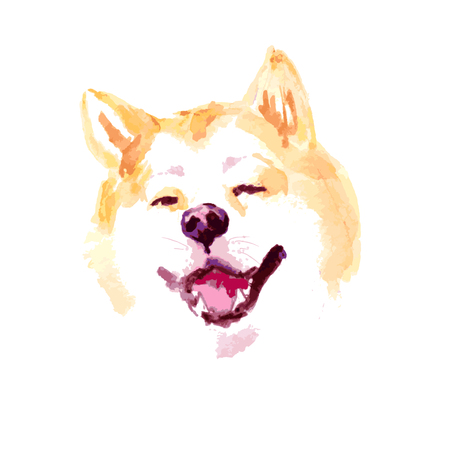 A Vector watercolor artistic akita dog portrait isolated on white background. Hand drawn sibainu puppy smiling illustration. Illustration
