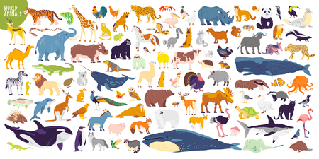 Big vector set of different world wild animals, mammals, fish, reptiles and birds. Rare animals. Funny flat characters, good for banners, prints, patterns, infographics, children book illustration etc Ilustracja