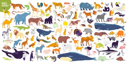 Gran conjunto de vectores de diferentes animales salvajes, mamíferos, peces, reptiles y aves del mundo. Animales raros. Personajes planos divertidos, buenos para pancartas, impresiones, patrones, infografías, ilustración de libros para niños, etc. Ilustración de vector