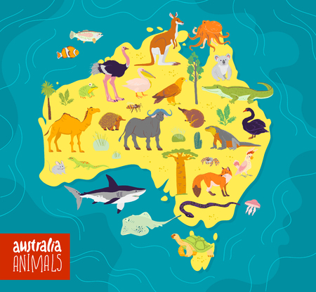 Vector flat illustration of Australia continent, animals and plants: parrot, camel, kangaroo, crocodile, ostrich, koala, turtle and palm tree, cactus etc. Good for infographics, children book, banner. Ilustração