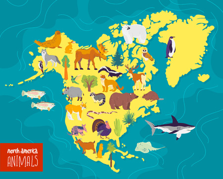 Vector flat illustration of North America continent, animals & plants: seal, bear, moose, owl, deer, raccoon, turkey, sequoia, fir tree, oak, cactus etc. Good for infographics, children book, banners.