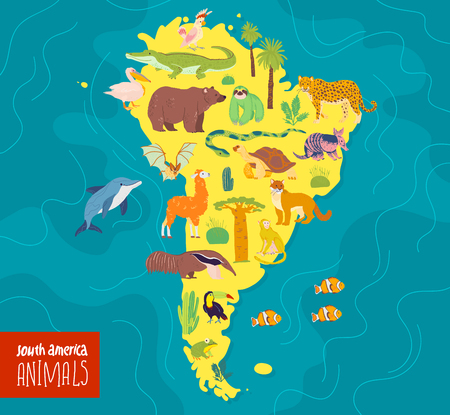 Vector flat illustration of South America continent, animals & plants: crocodile, bear, anaconda, anteater, monkey, toucan, fir tree, oak, cactus etc. Good for infographics, children book, banners.