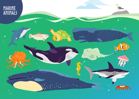 Conjunto de vector de animales marinos lindos dibujados a mano plana: ballena, delfín, pez, tiburón, medusa. Fauna submarina. Goof para niños alfabeto, ilustración de libros, infografías, pancartas, emblemas, etiquetas, etc. Ilustración de vector