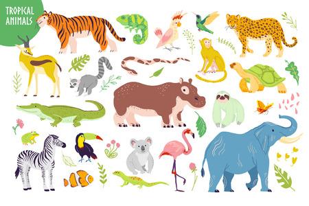 Vector set of flat hand drawn tropical animals, birds, reptiles, plants isolated on white background: tiger, zebra, koala, alligator, flamingo. For children alphabet, print, tag, illustration etc. Stock Illustratie