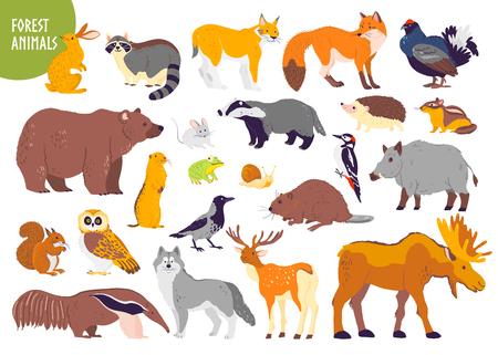 Colección de vectores de animales y aves del bosque: oso, zorro, liebre, búho aislado sobre fondo blanco. Estilo plano dibujado a mano. Bueno para la ilustración de libros para niños, el alfabeto, la pancarta del bosque, el emblema del zoológico, etc.