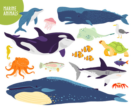 Vector set of flat hand drawn cute marine animals: whale, dolphin, fish, shark, jellyfish. Underwater wildlife. Goof for children alphabet, book illustration, infographics, banner, emblem, label etc.
