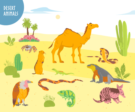 Collezione vettoriale di animali del deserto disegnati a mano piatti, rettili, insetti: cammello, serpente, lucertola isolato su priorità bassa bianca. Per illustrazione di libri per bambini, alfabeto, emblemi dello zoo, striscioni, infografiche. Vettoriali