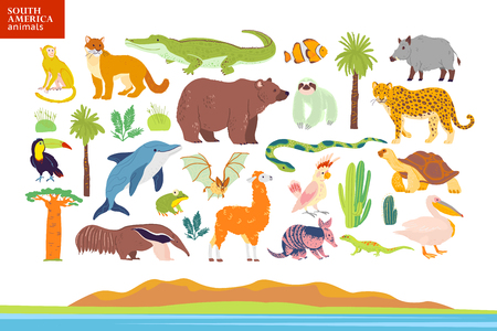Vector flat illustration of South America animals, landscape, plants: crocodile, bear, anaconda, anteater, monkey, toucan palm tree, oak, cactus. Good for infographics, children book, alphabet, banner Çizim