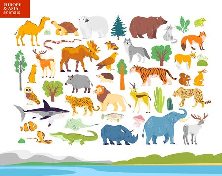 Vector flat illustration of Europe & Asia landscape, animals, plants: polar bear, moose, squirrel, wolf, elephant, tiger, rhino, crocodile, jaguar. For infographics, children book, alphabet, banners. Foto de archivo - 128615552
