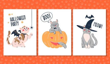 Set of funny Halloween cards and stickers with playful cts in witch hat, hiding in big pumpkin and playing with spider isolated on white background. Illusztráció