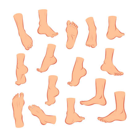 Collection of bare human man and woman feet arranged in different poses isolated on white background. Front, side, back view. Foot icon. Vector flat illustration.