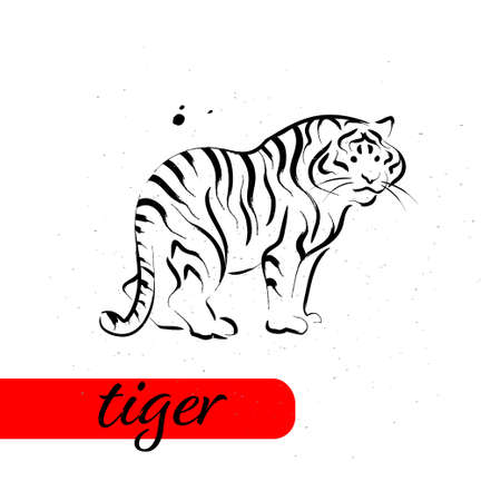 Chinese tiger year calendar animal silhouette isolated on white textured background. Vector hand drawn sketch style illustration. For banners, cards, advertising, congratulations. Ilustração