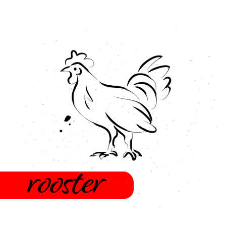 Chinese rooster year calendar animal silhouette isolated on white textured background. Vector hand drawn sketch style illustration. For banners, cards, advertising, congratulations.