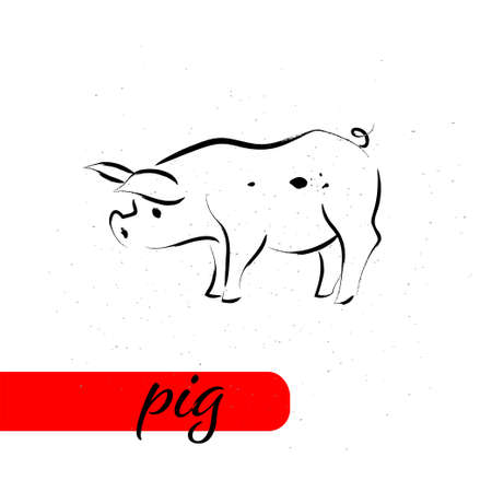 Chinese pig year calendar animal silhouette isolated on white textured background. Vector hand drawn sketch style illustration. For banners, cards, advertising, congratulations.
