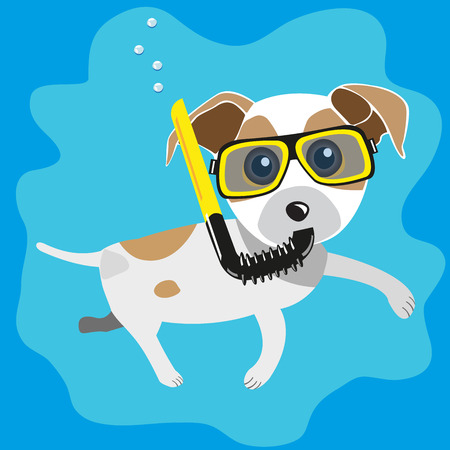 funny character  jack russell terrier snorkel dive