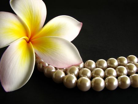 Frangipani with pearls on black background Stock Photo
