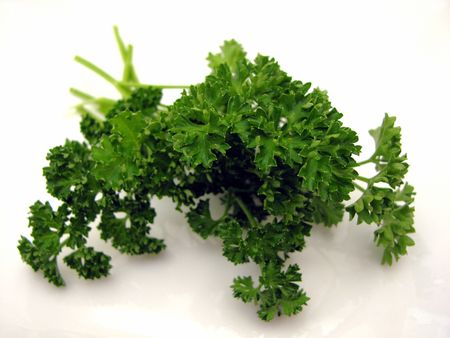 potherb: Isolated parsley on white background