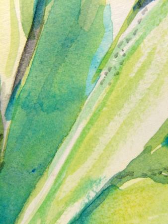 Green Vertical Watercolors 2 스톡 콘텐츠