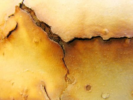 metallschrott: Rusty Grunge Background 1
