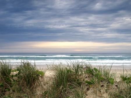 Dawn on the beach photo