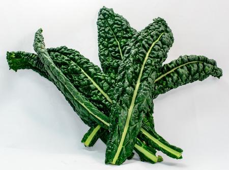 kale: Fresh Raw Lacinato Kale isolated on a white background.  Lacinato Kale is also known as Dinosaur Kale Stock Photo