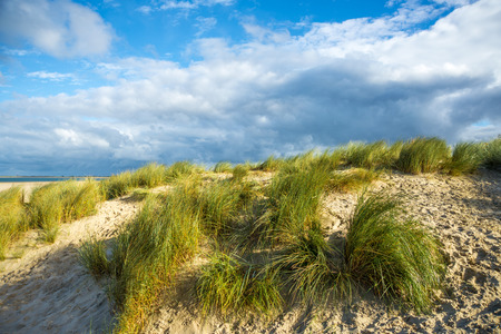 netherland: Port Zelande - Sea Coast in Netherland Stock Photo