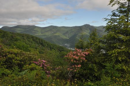 ridge: View from the Blue Ridge Parkway in North Carolina