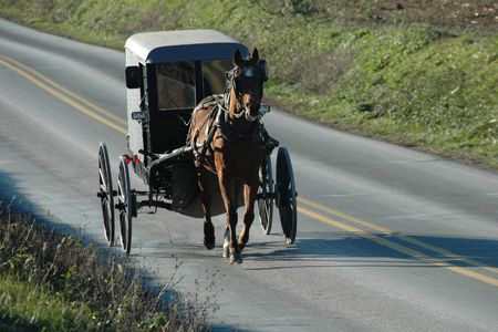 amish buggy: An Amish buggy on the road in Pennsylvania