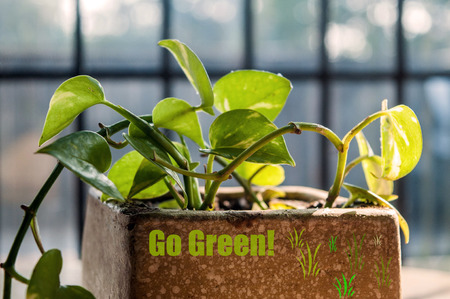 go green concept: Go green concept
