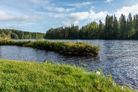 Sunny morning on finish river. Green grass and pine trees with bright blue water wild north nature landscape background. Vibrant colors and beautiful scene Reklamní fotografie