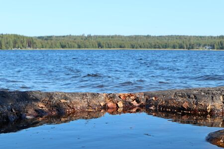Calm water surface with autumn leaves in front and waves in background autumn finnish lake nature