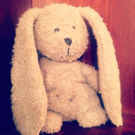 토끼 인형 스톡 콘텐츠