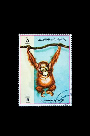 Collection stamp with a monkey photo