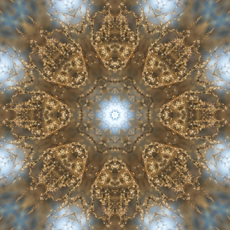 glistening: Relucir Oro Prairie Weed Kaleidoscope Foto de archivo
