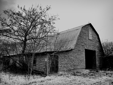 barn black and white: Old Traditional Barn In Black and White Stock Photo