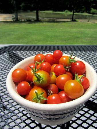 熟した赤いチェリー トマトをボウルします。 写真素材