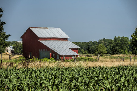old red barn: Old Red Barn and Corn Fields Stock Photo