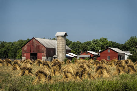 old red barn: Hand Cut Wheat Stacks and Old Red Barn