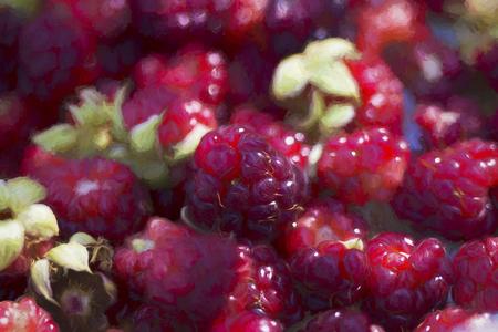Digitally Painted Red Boysenberries