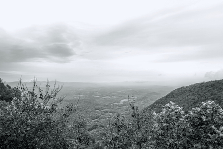 Great Smoky Mountain Park Black and White Landscape