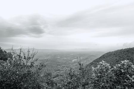Great Smoky Mountain Park Schwarz-Weiß-Landschaft Standard-Bild - 88096158