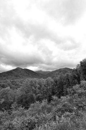 Great Smoky Mountains Black and White Landscape Standard-Bild - 120983570