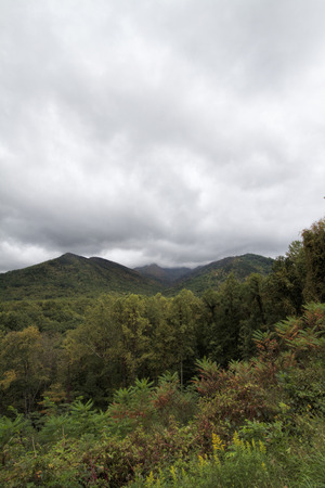 Great Smoky Mountains Autumn Landscape 4 Standard-Bild - 120983573
