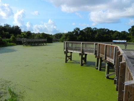 Piers op Green Lake