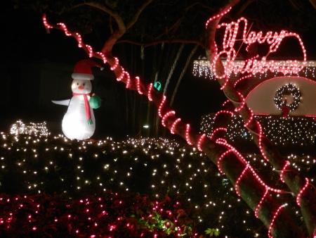Vakantie lichten met Santa pinguïn